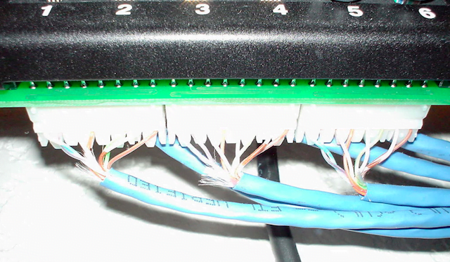 Cables punched down to the back of the patch panel